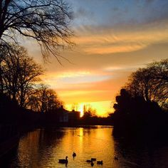 Glorious sunset in Lichfield, England