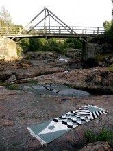 KALA at NAutelankoski rapids, Lieto, Finland.