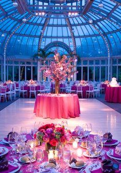 The Palm House, Brooklyn Botanic Garden