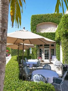 Sarasota County is blessed with fantastic dining options in Sarasota, Siesta Key or St Armand's Circle. We're sharing the best restaurants in Sarasota Sarasota Beach, Bradenton Beach, Sarasota Florida, Old Florida, Florida Beaches, Florida Usa, Venice Florida, Siesta Key Florida, Florida Vacation