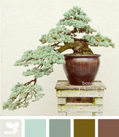 bonsai tones color palette.  this would work well for the existing wall colors in my living room, and with the blonde wood.
