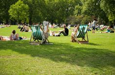 The deck chairs in Green Park where Floria meets Lucy for their Sunday afternoon chats