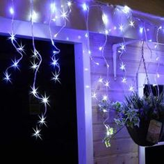 The 9 best led icicle lights images on pinterest led icicle lights buy icicle lights at uk christmas world they come in different lengths colours including warm white multi coloured mozeypictures Image collections