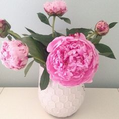 Peonies are a girl's best friend. #peonies #sloaneranger #peony