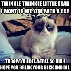 Twinkle twinkle little star, I want to hit you with my car. Throw you off a tree so high; hope you break your neck and die. I'm going to wrap your neck in wire, beat you, then set you on fire.