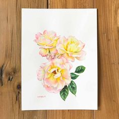 I loved painting the delicate yellows and pinks in this beautiful rose. #rose #roses #roseart #rosepainting #watercolour #tearose #artforsale #botanicalillustration #artforthehome #buyart #floralart Watercolor Rose, Watercolour Painting, Painting & Drawing, Beautiful Paintings Of Flowers, Beautiful Roses, Peace Rose, Hybrid Tea Roses, Rose Art, Love Painting