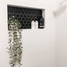 Tile Shower Niche, White Tile Shower, Bathroom Niche, White Bathroom Tiles, Natural Bathroom, Bathroom Renos, Bathroom Renovations, Shower Bathroom, Girl Bathrooms