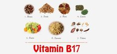 Vitamin B also known as amygdalin or laetrile is a anti-cancer vitamin. Read to know about the vitamins, its benefits & sources. Vitamin B17 Food, Vitamin A Foods, B 17 Vitamin, Cancer Fighting Foods, Cancer Cure, Cancer Cells, Beat Cancer, Vitamins For Skin, Natural Vitamins