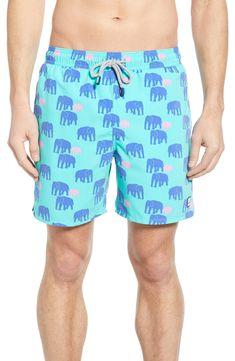 385ba629b6 TOM & TEDDY ELEPHANT PRINT SWIM TRUNKS. #tomteddy #cloth. ModeSens Men