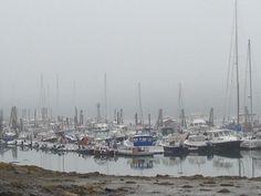 #harraseeketyachtclub #maine #summer #fog