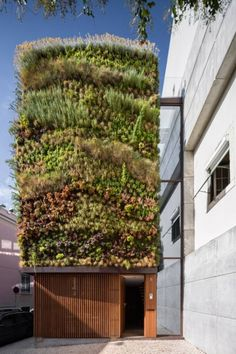 idée d'aménagement paysager innovant: jardin vertical