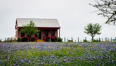 Little House on the Prairie, near Gay Hill, Texas