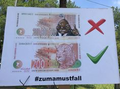 How South Africans feel about President Zuma