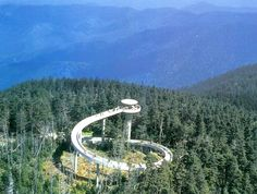 Clingmans Dome actually runs along the Appalachian Trail which winds through 14 states. From Georgia to Maine the Appalachian Trail winds through offering beautiful scenes and breath taking views. We hiked to the top on our vacation 2012!  Just amazing !!