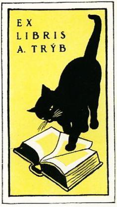 Ex libris with cat! #cats