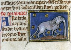 "discardingimages: "" anabula - an ethiopian beast (most certainly a giraffe…) Thomas of Cantimpré, Liber de natura rerum, France ca. 1290. Valenciennes, Bibliothèque municipale, ms. 320, fol. 51v """