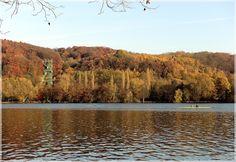 Herbst am Baldeneysee von Willi W.