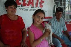 daughter adopted a cat in Baha, CA