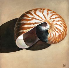 Nautilus Shell, original acrylic painting on canvas, 12x12, summer cottage decor, neutrals