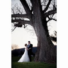 For today's #photofriday we were thinking back to this 2014 wedding and LOVING the contrast between Bethany's gorgeous gown and the old mature tree!