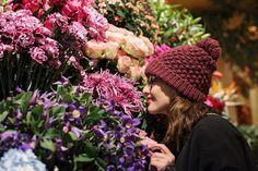 Baltimore Flowers, Antwerp.