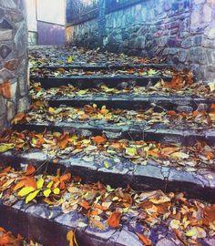 #favseason #novemberfalls #autumnlove #stillautumn #mykindoflove🍂🍁💕 #suceava.romania
