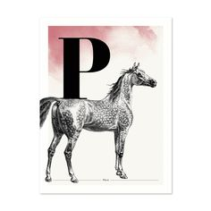 Buchstabe P wie Pferd - ein & alles Wandkunst für Kinder Moose Art, Animals, Paper, Letter F, Great Gifts, Kids, Nice Asses, Animaux, Animal