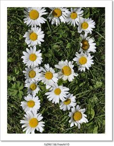 """R - Letters of daisies"" - Art Print from FreeArt.com"