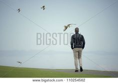 Man Walks In The Park Through The Seagulls