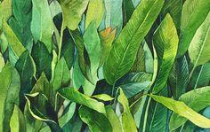 네 눈앞에 내 그림🌷 (@leegreeem) • Instagram photos and videos Watercolor Plants, Plant Leaves, Palms, Watercolors, Inspirational, Palmas, Water Colors, Palm Trees, Watercolor Paintings