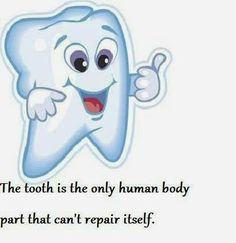 The tooth is the only human body part that can't repair itself.