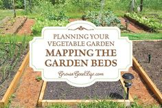 Before sowing a single seed, it is helpful to sketch a map of your vegetable garden so you know how many seedlings you need where they will be planted.