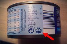 """""""Dolphinsafe"""" - Ein Umweltsiegel auf dem ein Delfin abgebildet ist. Doch was steckt hinter diesem Siegel? Ist da doch mehr Schein als Sein?"""