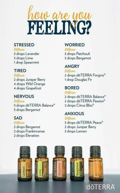 Welcome to my doTERRA Diffuser Blends index. There is basically an unlimited number of ways to use doTERRA essential oils. Essential Oil Diffuser Blends, Doterra Diffuser, Relaxing Essential Oil Blends, Best Diffuser, Essential Oil Cleaner, Humidifier Essential Oils, Aroma Diffuser, Diffuser Recipes, Doterra Essential Oils