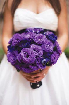 purple wedding ideas - dark purple single bloom wedding bouquet