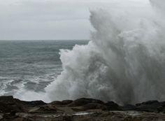 oregon waves - Bing Images