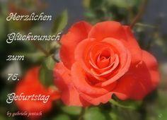 "Geburtstagskarte ""rote Rose"" von PHOTOGLÜCK auf DaWanda.com"