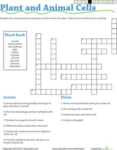 Worksheets: Life Science Crossword: Plant and Animal Cells