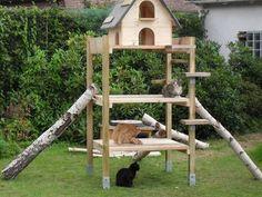 Die 17 Besten Bilder Von Katzengarten Cat Trees Dog Cat Und Pets