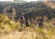 Naturerlebnisweg Zauberwald