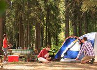 Book your camping site at Prince Albert National Park, Camping Site, Camping Hacks, Parcs Canada, Thing 1, Parc National, National Treasure, Prince Albert, Family Memories, Campsite