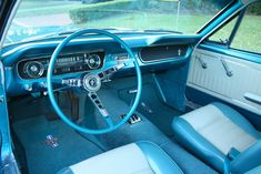 1966 Ford Mustang Coupe - Pristine Classic Cars For Sale Ford Mustang Coupe, Mustang 1966, Mustang Cars, Ford Classic Cars, Best Classic Cars, First Mustang, Mustang Interior, Dodge Challenger, Old Cars