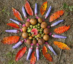 A natural mandala of leaves, seeds and nuts. Kids do this kind of pattern-making before they even realise the design methodology behind it. Human nature to group things? Mandala Nature, Mandala Art, Flower Mandala, Flower Art, Land Art, Nature Crafts, Fall Crafts, Mudras, Ecole Art