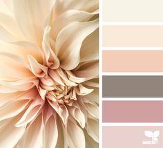 { flora tones } image via: @c_colli