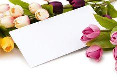 Framed Wallpaper, Flower Background Wallpaper, Flower Phone Wallpaper, Flower Backgrounds, Text Background, Paper Background, Wedding Invitation Background, Birthday Background, Borders For Paper