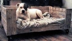 Pallet / wood / Dog bed basket, house, crate, bench. Cat perch. Hout / Houten Hondenmand, Mand hond, Hondenbed, Bed voor honden