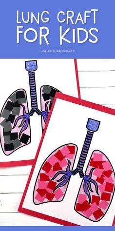 Teach young kids about the respiratory system with this simple lung craft for preschoolers. It's a great activity for human body unit studies. Body Preschool, Preschool Art Activities, Preschool Arts And Crafts, Preschool Lessons, Kid Crafts, Science Lessons, Easy Crafts, Human Body Science, Human Body Activities