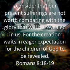 Romans 8:18-19 (KJV)