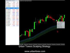 15 Best Forex Trading LIVE & Webinars images in 2012