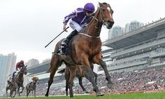Talking Horses: Saturday's best bets plus the latest racing news